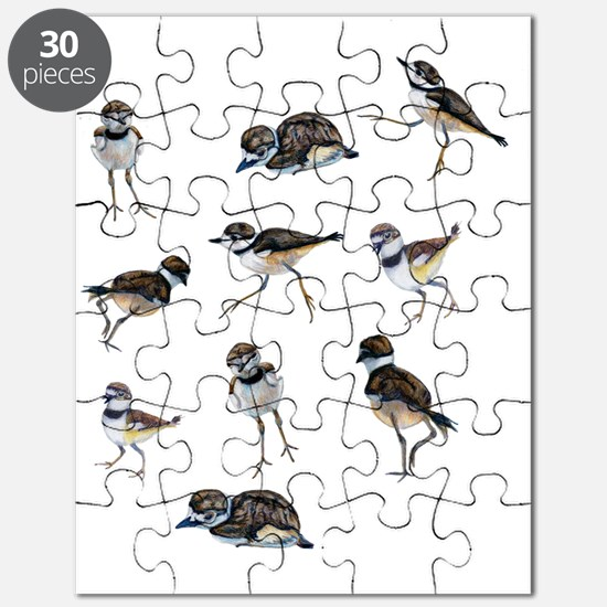 Killdeer chicks Puzzle