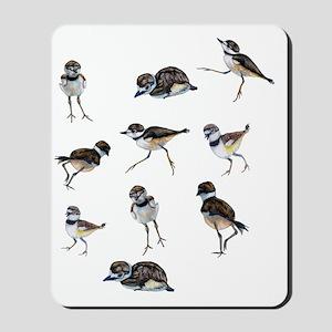 Killdeer chicks Mousepad