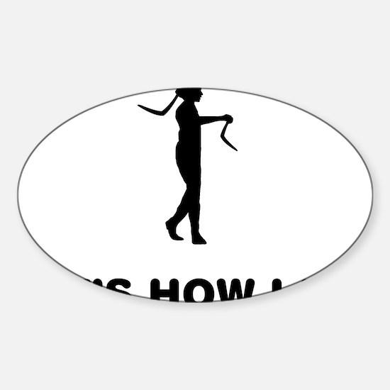 Boomerang-12-A Sticker (Oval)