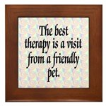 Best Therapy Is A Visit Framed Tile
