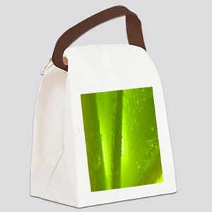 Water Drops Canvas Lunch Bag
