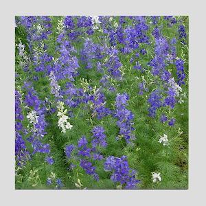 Texas Bluebonnets in Bloom Tile Coaster