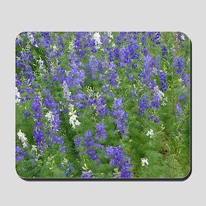 Texas Bluebonnets in Bloom Mousepad