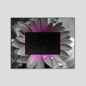 Wonderful Flower with Waterdrops Picture Frame
