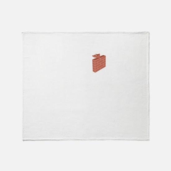 Bricklayer-02-B Throw Blanket