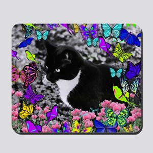 Freckles the Tux Cat in Butterflies II Mousepad
