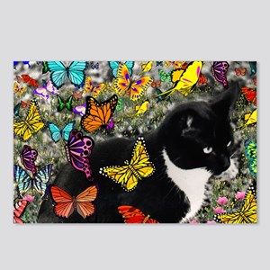 Freckles the Tuxedo Kitty Postcards (Package of 8)
