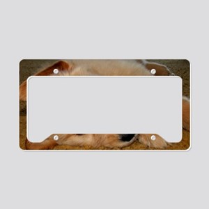Cooper Wants a Nap License Plate Holder