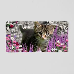Emma Tabby Kitten in Flower Aluminum License Plate