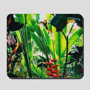 Tropical 2 Mousepad