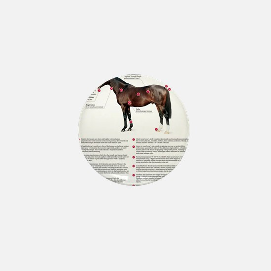Vital Signs of a Healthy Horse Mini Button