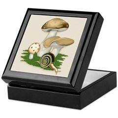 Snail in Mushroom Garden Keepsake Box