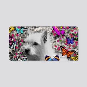 Violet the White Westie in  Aluminum License Plate