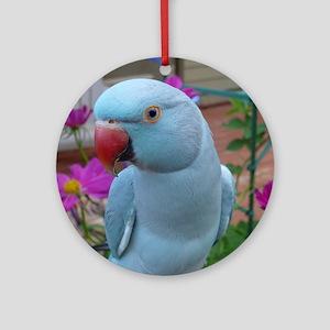 Indian Ringneck Parakeet Closeup Round Ornament