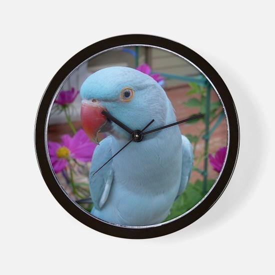 Indian Ringneck Parakeet Closeup Wall Clock