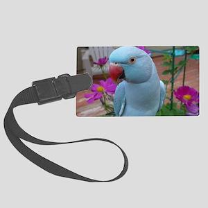 Indian Ringneck Parakeet Closeup Large Luggage Tag