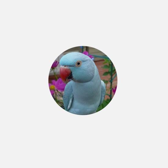 Indian Ringneck Parakeet Closeup Mini Button