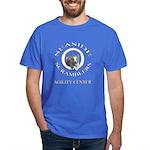 Royal Blue T-Shirt, white type