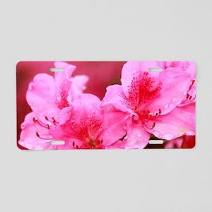 Pink azaleas Aluminum License Plate