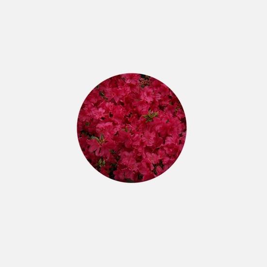 Pink Azaleas Mini Button