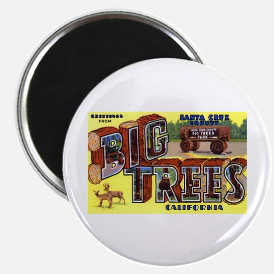 Big Trees Park California Magnet