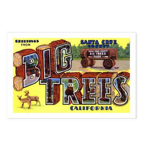 Big Trees Park California Postcards (Package of 8)