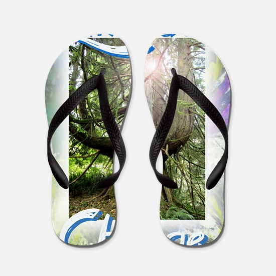 Embrace Change Discover, Uncover, Accep Flip Flops