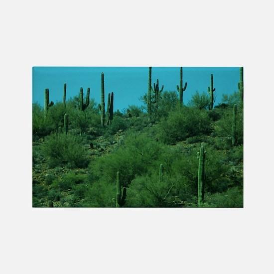 Cactus Rectangle Magnet