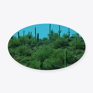 Cactus Oval Car Magnet