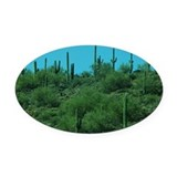 Cactus Oval Car Magnets