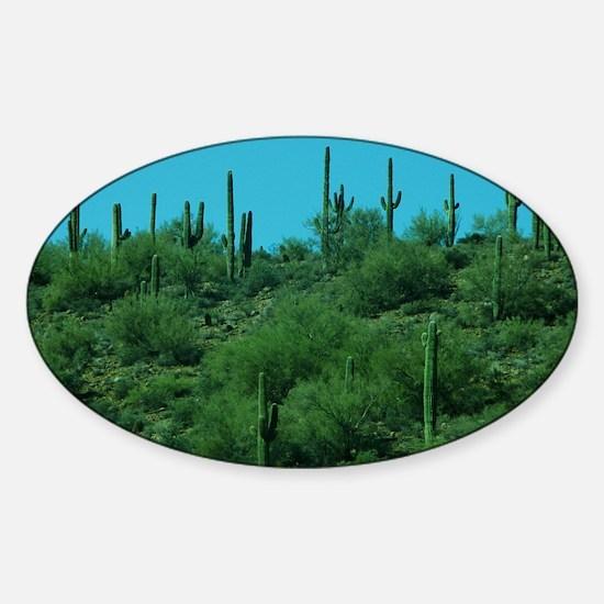 Cactus Sticker (Oval)