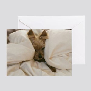 Yorkie Sleepy Greeting Card
