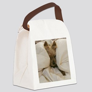 Yorkie Sleepy Canvas Lunch Bag