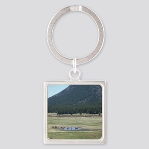 Elk in the Wild in Estes Park, Col Square Keychain