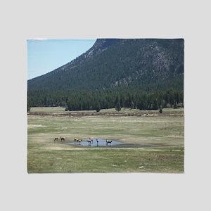 Elk in the Wild in Estes Park, Color Throw Blanket