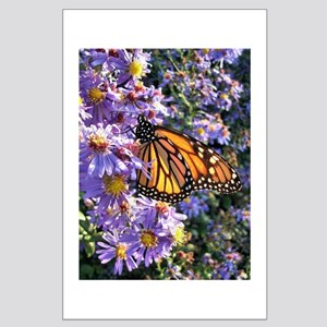 Monarch Butterfly Large Poster