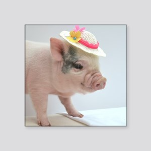 "Micro pig with Summer Hat Square Sticker 3"" x 3"""