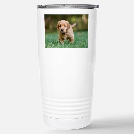 Puppy-Golden Retriever Stainless Steel Travel Mug