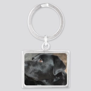 """""""Turbo  The  Great"""" Landscape Keychain"""