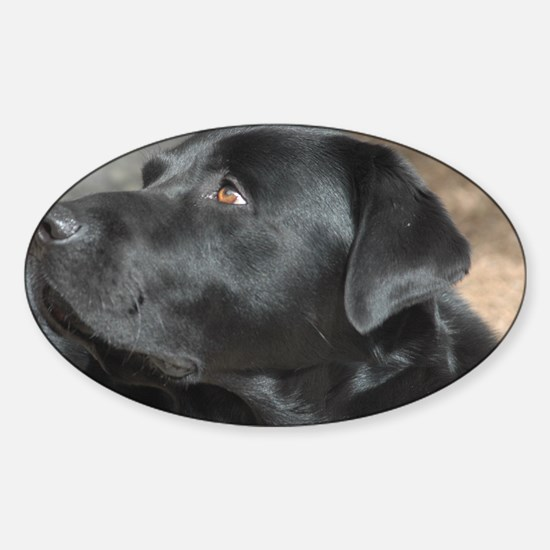"""""""Turbo  The  Great"""" Sticker (Oval)"""