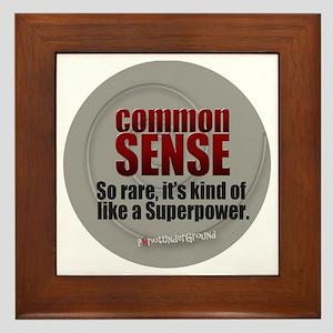 Common Sense Framed Tile