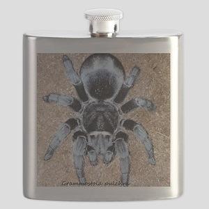 Brazilian Black Tarantula Flask