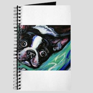 Boston Terrier eyes Journal