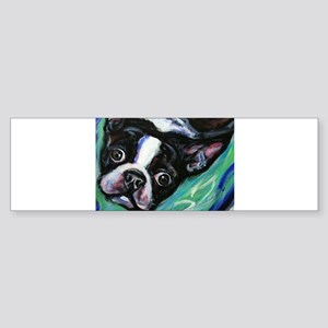Boston Terrier eyes Bumper Sticker