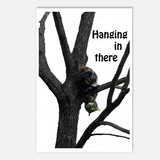 Hanging in There Cat Postcards (Package of 8)