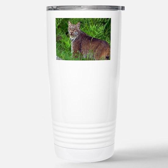6x4_pcard 2 Stainless Steel Travel Mug