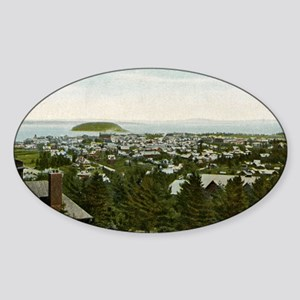 Bird's Eye View Bar Harbor Maine Vi Sticker (Oval)