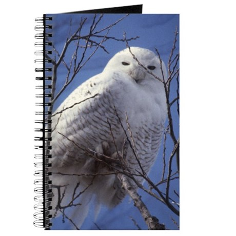 Snowy White Owl, Blue Sky Journal
