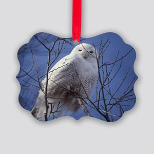 Snowy White Owl, Blue Sky Picture Ornament
