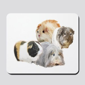 guinea pig kisses Mousepad